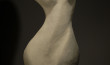Standing Torso series ARCHIVE